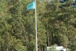 Yard and camping flag